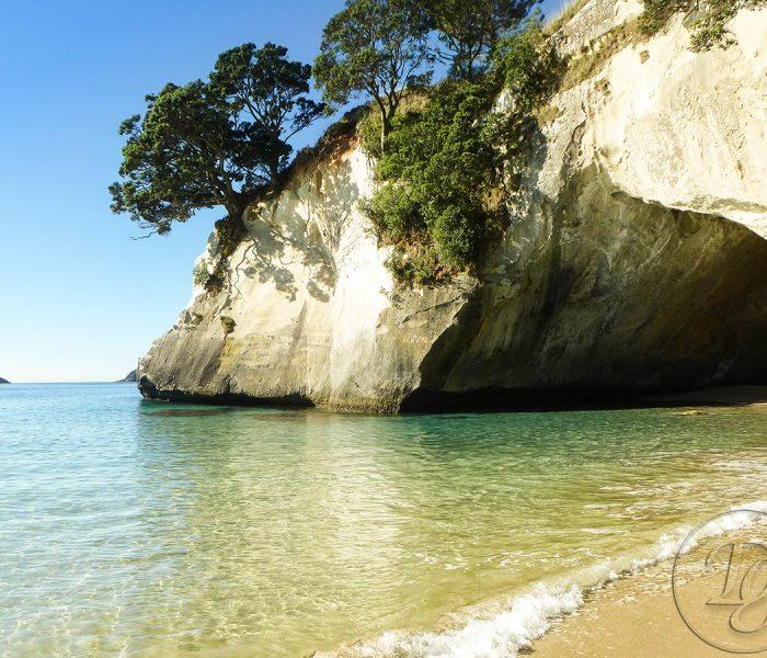 Entdecke Neuseeland, Stop 6: Coromandel, Cathedral Cove